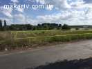 Продам земельну ділянку в с.Березівка