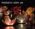 Светящиеся водяные лилии
